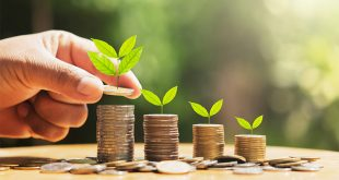 El potencial del mercado de bonos verdes